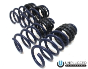 Unplugged Performance DUAL RATE LOWERING SPRING TESLA MODEL 3